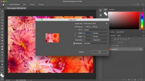 screenshot of Photoshop CC' Image size popup menu